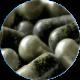 ✭ Fucus Pack Gélules 1Kg - Gélule gélatine 375mg 100% naturel ✭