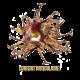 ✭ Harpagophytum - Complément alimentaire - Confort articulaire ✭