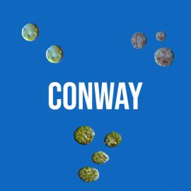 Milieu Conway