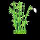✭ Bambou - Complément alimentaire - 100% naturel ✭