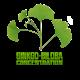 ✭ Ginkgo Biloba - Complément alimentaire - 100% naturel ✭