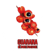 ✭ Guarana - Complément alimentaire - 100% naturel ✭