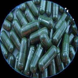 Spiruline Pack Gélules 1Kg