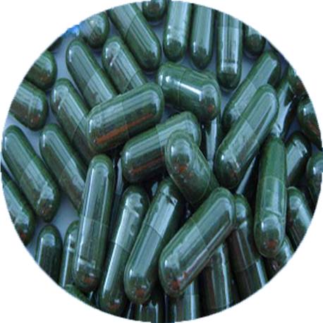 ✭ Spiruline Pack Gélules 1Kg - Gélule gélatine 500mg 100% naturel ✭