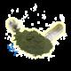 ✭ Chlorella Pack Gélules 1Kg - Gélule gélatine 100% naturel ✭