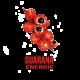 ✭ Guarana 1Kg - Complément alimentaire - 100% naturel ✭