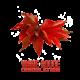 ✭ Vigne rouge - Complément alimentaire - 100% naturel ✭