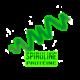 ✭ Spiruline Poudre - Complément alimentaire - 100% naturel ✭