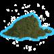 ✭ Chlorella 1Kg Pack Poudre - Complément alimentaire - 100% naturel ✭