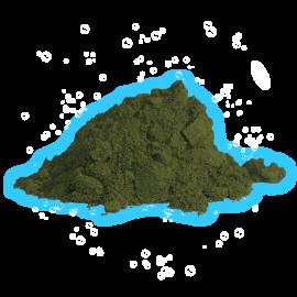 Chlorella 1Kg Pack Poudre