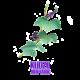 ✭ Kudzu - Complément alimentaire - 100% naturel ✭
