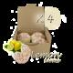✭ Bombe de bain muffin citron - Boîte X 4 ✭
