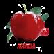 ✭ Acérola - Complément alimentaire - Vitamine C ✭