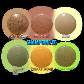 Boîte découverte 6 shampoings solides