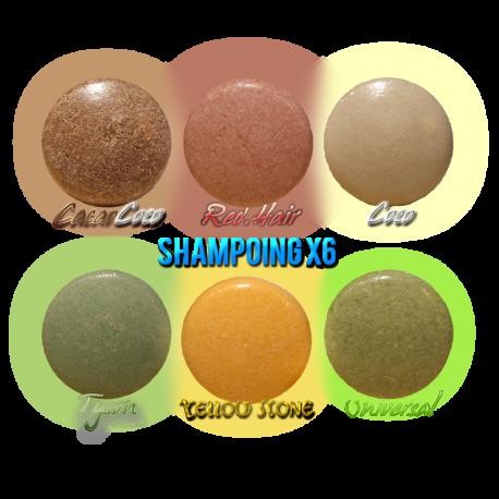 ✭ Boîte découverte ✭ 6 shampoings solides ✭