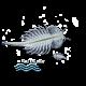 ✭ Artémia Salina Nourriture vivante - Alimentation pour larves, poissons ✭