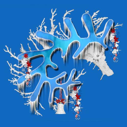 Logo Teramer Glacé