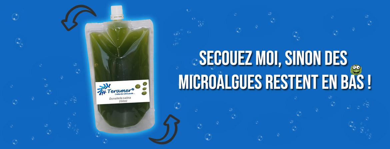 Secouez les microalgues